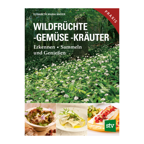 """Buch """"Wildfrüchte, -gemüse, -kräuter"""""""