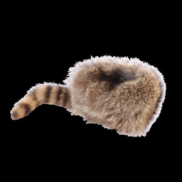 Fellwechsel - Trappermütze
